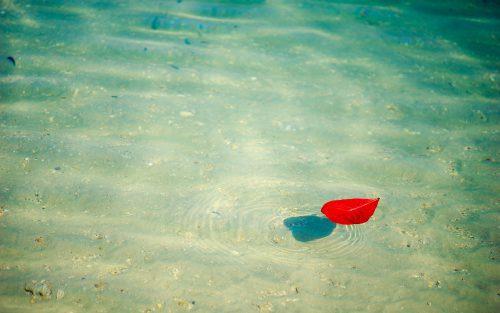 Panta Rhei: Man kann nicht zweimal in denselben Fluss steigen